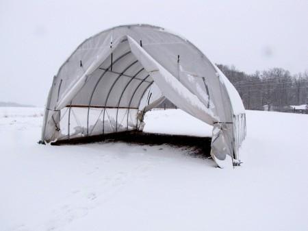 My dad's greenhouse